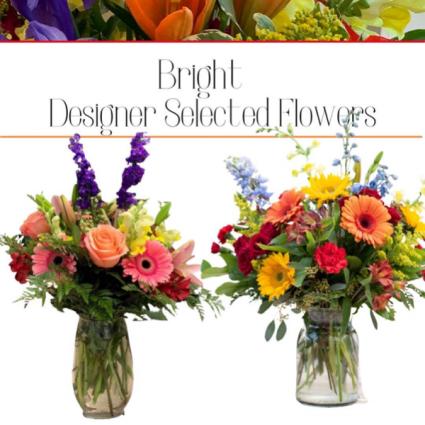 Bright-Designer's Choice