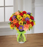 Bright Expressions Arrangement in Powell, OH | MILANO FLORIST