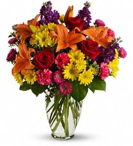 Bright Eyes - 528 Vase Arrangement