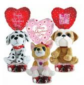 Bright Eyes Pooch Valentine's Day