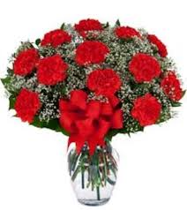 Bright Happy Red Carnation  Fresh Floral Vase Arrangement