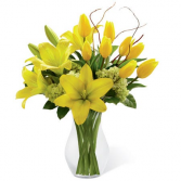 Bright Lily Vase Just Because