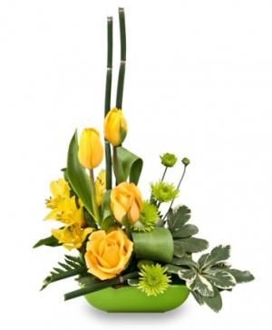 Uplifting Lime & Sunshine Floral Design in Winnipeg, MB | EDELWEISS FLORIST