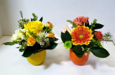 Bright Little Beauties Small Container Arrangements