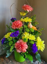 Bright & long lasting flowers