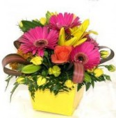Bright Pot Arrangement In a Yellow Tin   Lovely Arrangement