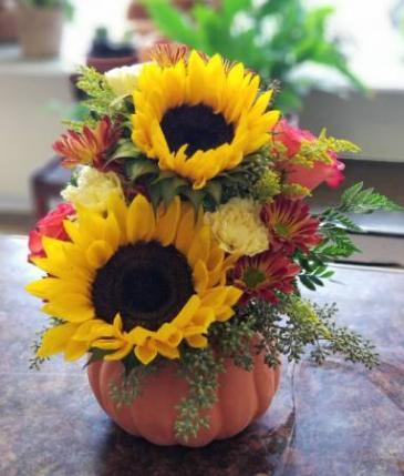 SOLD OUT Bright Sunflower Pumpkin Arrangement