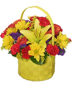 BRIGHT & SUNNY BASKET Floral Arrangement in Washburn, ND   Frontier Floral & Gifts