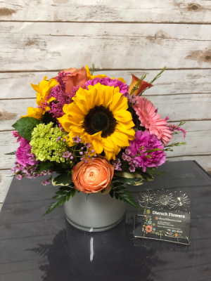 Hello Dolly Arrangement in Weymouth, MA | DIERSCH FLOWERS