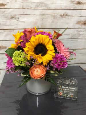 Hello Dolly Arrangement in Weymouth, MA | DIERSCH FLOWERS