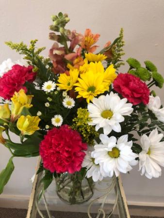 Bright Upsie daisies