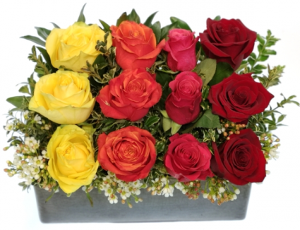 Bright Wall Of Roses Container Arrangement