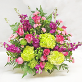 BRIGHTEN THEIR DAY Any Occasion