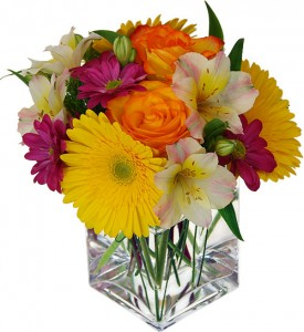 Brighten Your Day   in Charlotte, NC | L & D FLOWERS OF ELEGANCE