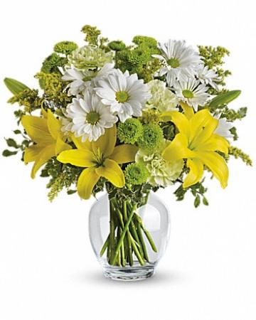 Brightly Blooming TEV11-2