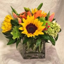 Brightly Cheerful! Vased Arrangement, Compact