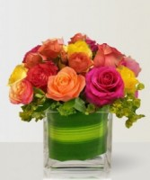 Brightly colored Roses