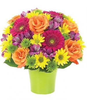 BRILLIANCE BOUQUET  Perfect for every occasion! in Arlington, TX | Erinn's Creations Florist