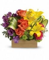 Brilliant Box of Blooms