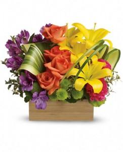Brilliant Box of Blooms  in Fort Lauderdale, FL   ENCHANTMENT FLORIST