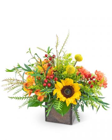 Brilliant Sunset Flower Arrangement