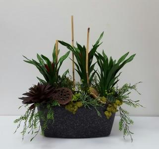 Bromelia Plant Arrangement Commercial