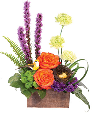 Brush of Blooms Flower Arrangement in Chicopee, MA | GOLDEN BLOSSOM FLOWERS & GIFTS