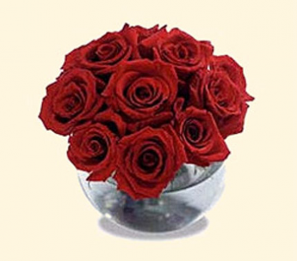 Bubble Bowl of Short Red Roses Fresh Flowers