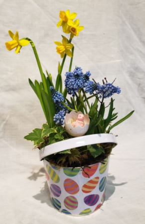 Bucket Full Of Easter! Spring Bulb Planter