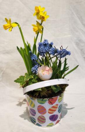 Bucket Full Of Easter! Spring Bulb Planter