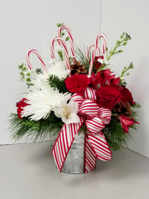 Bucket of Cheer Fresh Arrangement in Fulton, NY | DeVine Designs By Gail