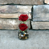 Budding Romance Contemporary Rose Arrangement