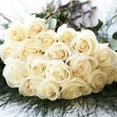 Bulk Premium Roses Bulk Premium Roses