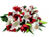 Bouquet of Beautiful Cut Flowers Designers Choice