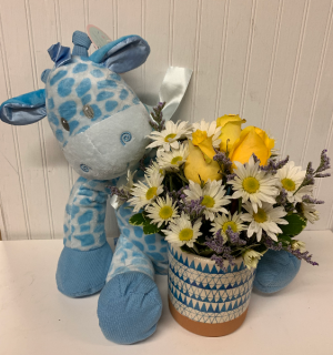 """Bundle of Joy-Baby Boy with 16"""" Giraffe Rattle  in Easton, MD   ROBINS NEST FLORAL AND GARDEN CENTER"""