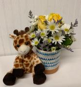 Bundle of Joy-Baby Boy with Giraffe