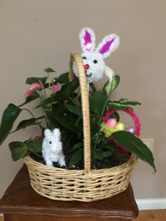 Bunny easterbasket garden basket with asst green plants
