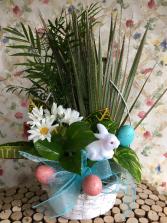 Bunny In The Garden Plant Garden