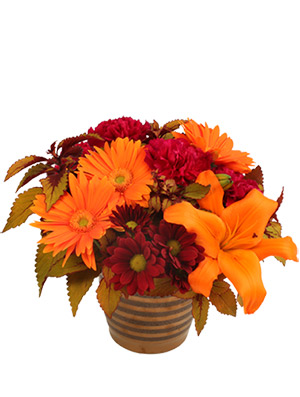 Rustic Orange and Cranberry Flower Arrangement in Bath, NY | VAN SCOTER FLORISTS