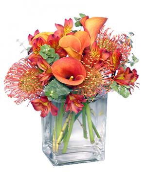 BURNT SIENNA Flower Arrangement in Solana Beach, CA | DEL MAR FLOWER CO