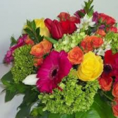 Burst Of Color ...Flowers Maybe Assorted  Cut Flower Bouquet Wrapped in Celo and A Bow