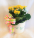 Busy Bee! Administrative Professionals Day