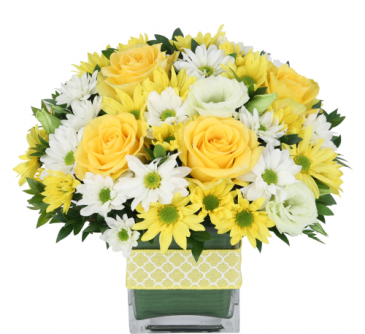 Buttercups and polka dots sold as standard only Fresh arrangement