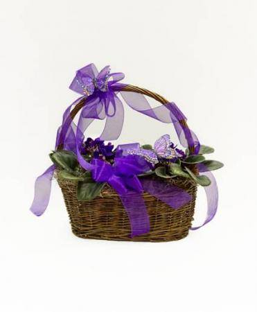 Butterflies & Violets Blooming Plant Basket
