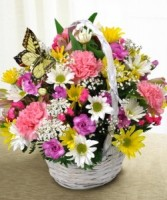 Butterfly Basket Arrangement in Indianapolis, Indiana | SHADELAND FLOWER SHOP