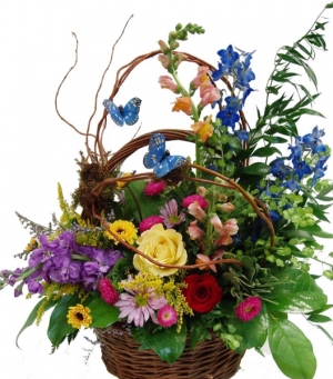 BUTTERFLY BASKET EVERYDAY  in Kansas City, MO | Luxury Blooms