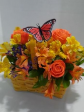 Butterfly Basket Orange Or Your Color Choice