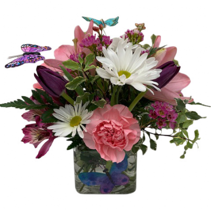 Butterfly Blooms Fresh Arrangement