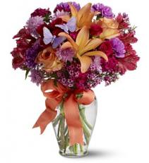 Butterfly Blooms - 477 Vase Arrangement