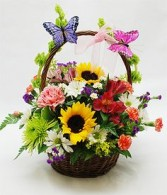 Fluttering Butterfly Basket arrangement